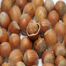 Arôme - Noisette - PA (Hazelnut Flavor)