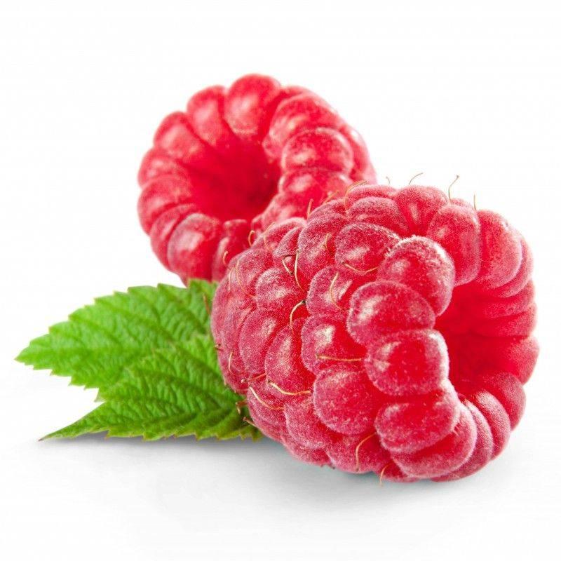 10 ml - Arôme - Framboise - FA (Berryl (Raspberry) flavor)