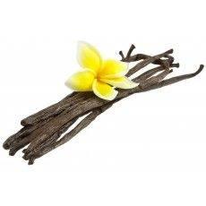 10 ml - Arôme - Vanille classique - FA (Madagascar flavor (Vanilla Classic)
