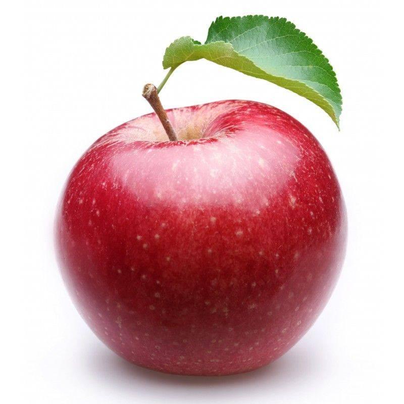 10 ml - Arôme - Pomme - FA (Stark flavor (Apple)