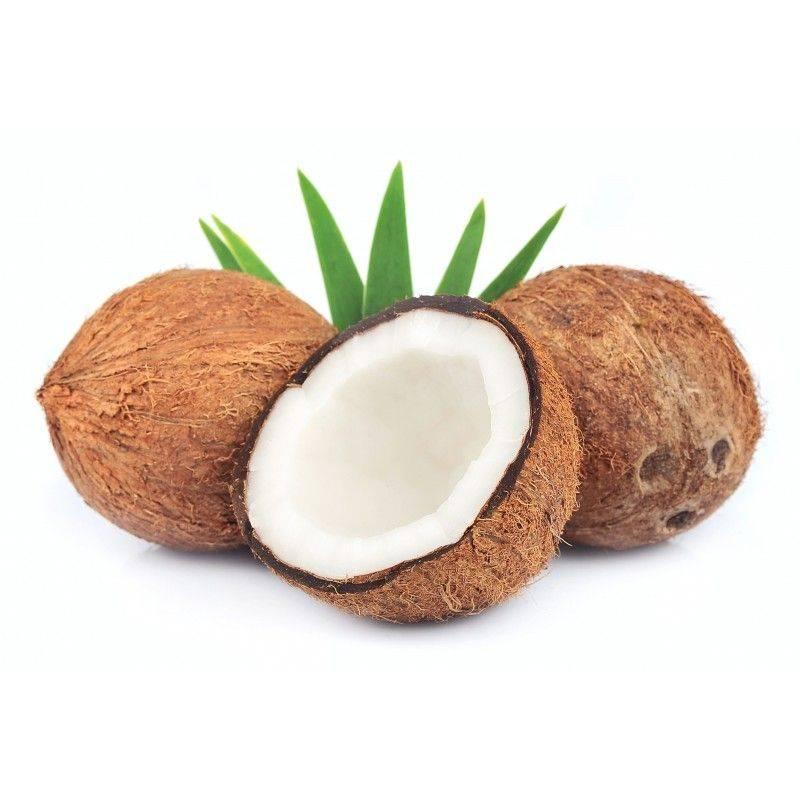 10 ml - Arôme - Noix de Coco - FA (Coco' flavor (Coconut)