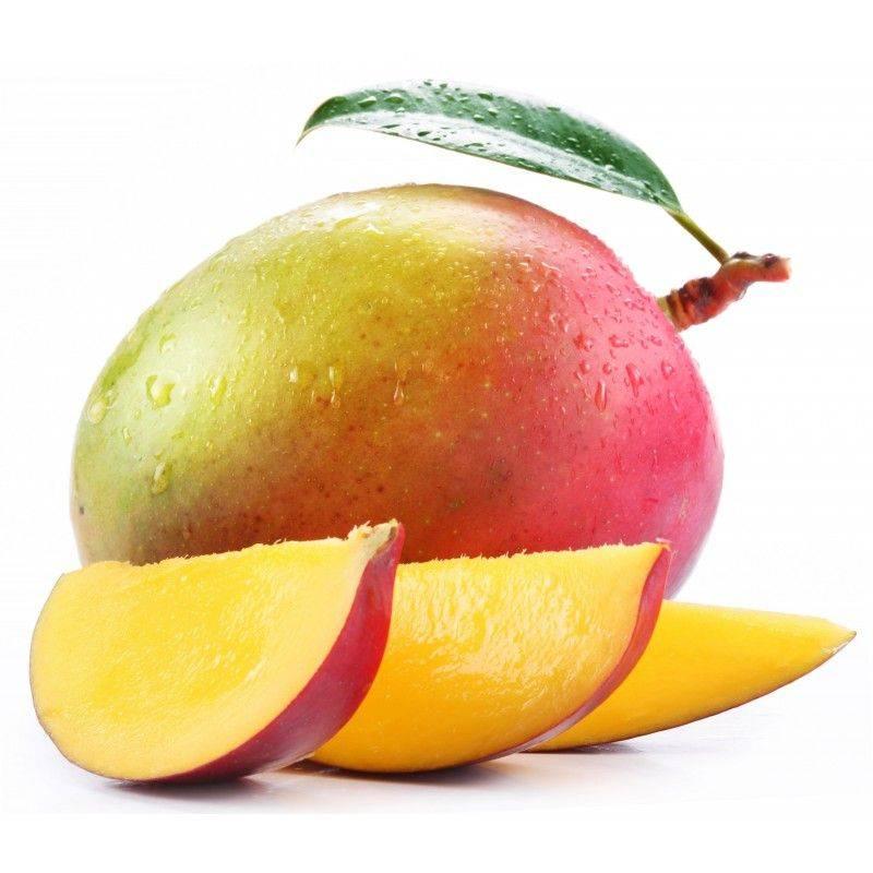 10 ml - Arôme - Mangue - FA (Mango flavor - Costarica Special)