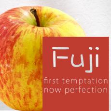 Arôme Concentré Fuji Flavour Art Arômes Flavour Art