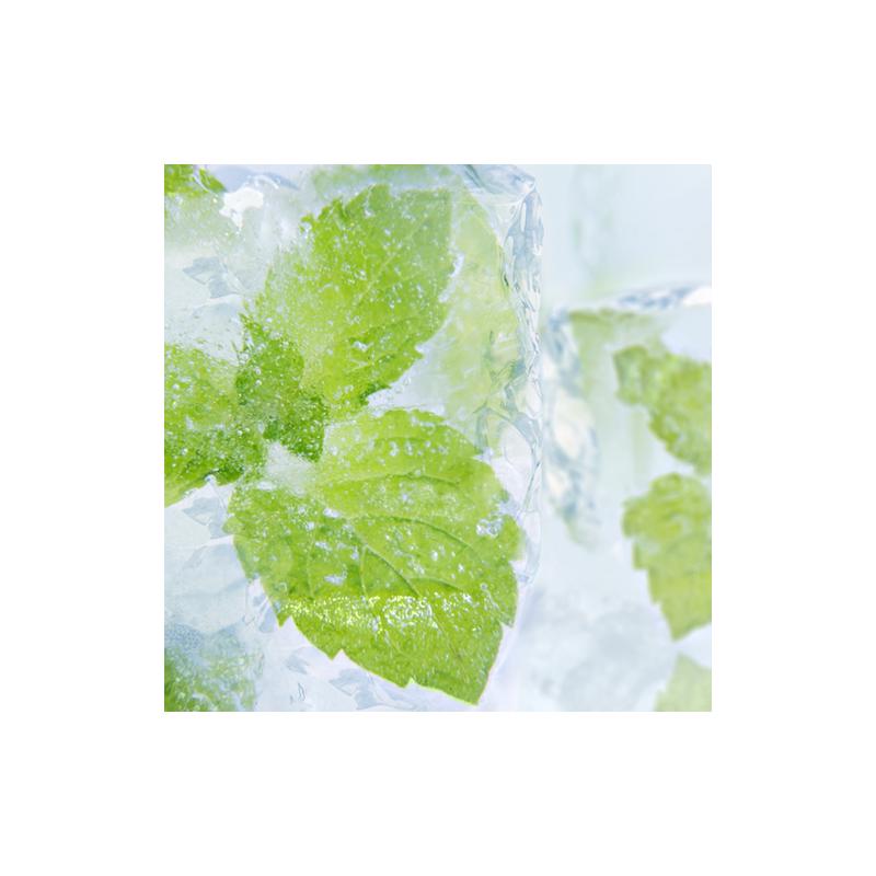 7 ml - Arôme - Menthol Liquide - PA (Menthol Liquid PG)